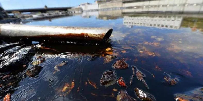 Quels sont les dangers causés par les marées noires ?