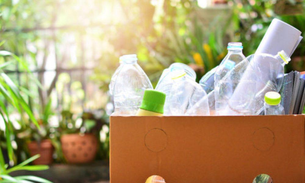 Le bioplastique est-il vraiment écologique?